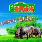 猪场兽医(河北承德)