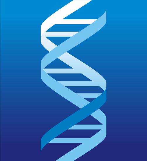 北京中科基因